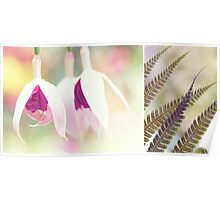 Softly Diptych Poster