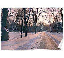 Winter Dream Poster