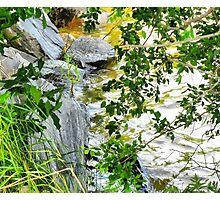 Kenora - Lakeshore Walk Photographic Print