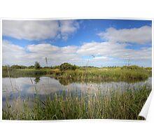 Wetlands Waterways Poster