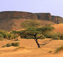 an awesome Chad landscape by beautifulscenes
