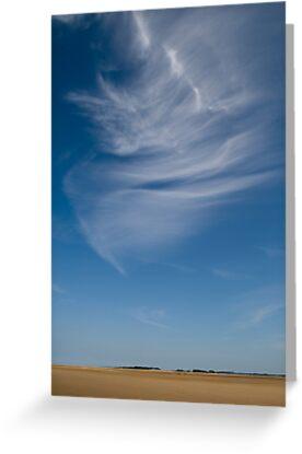 Vast beach by david marshall