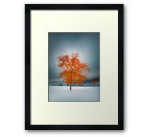 The Dreams of Winter Framed Print