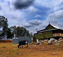 Farm stay - Bunyip Springs Farm by Mark Malinowski
