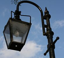Light - Morden Hall Park by ellismorleyphto