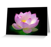 Blissful - Lotus, Sydney Royal Botanic Gardens, NSW Greeting Card