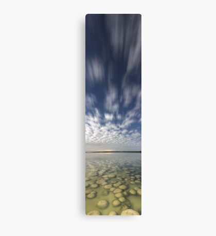 Lake Clifton Thrombolites  Canvas Print
