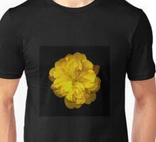 closeup of yellow camellia flower on black background Unisex T-Shirt
