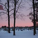 American Wonderland.... by Justine Kenney