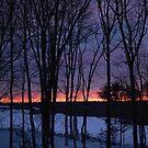 Burning Winter... by Justine Kenney