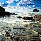 Gull Rock Trebarwith Strand II by David Wilkins