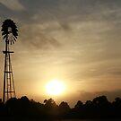 Sunset on the farm by Judith Cahill