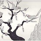 Cherry blossoms by Devi Senthil