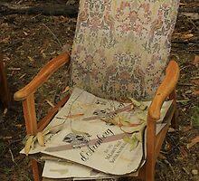Chair by Carissa Hubrechsen