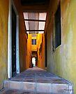 House in San Juan, Puerto Rico by Yannik Hay
