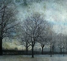 frozen tree alley by Sonia de Macedo-Stewart