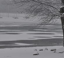 Frozen Lake Scene by mltrue