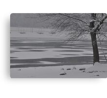 Frozen Lake Scene Canvas Print