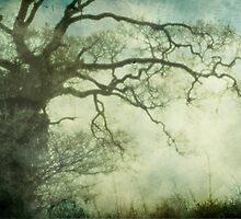 From under my tree by Sonia de Macedo-Stewart