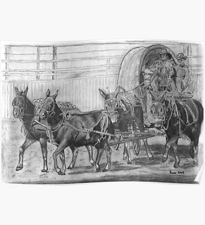 Mule Train at the Rodeo Poster
