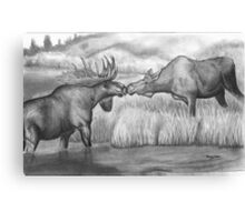 Two Moose Pair Off Canvas Print