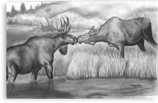 Two Moose Pair Off by Russ Smith