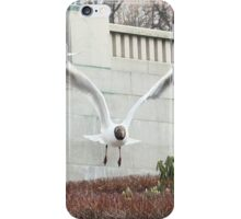 Fowl in the sculpture park iPhone Case/Skin