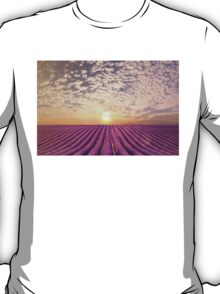 Sunset over a summer lavender field in Provence, France T-Shirt