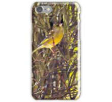 Greenfich posing iPhone Case/Skin