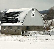 December in Wisconsin by Lynne Prestebak