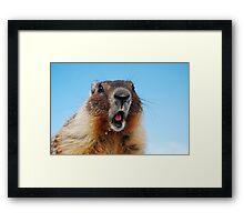 Marty the Marmot Framed Print