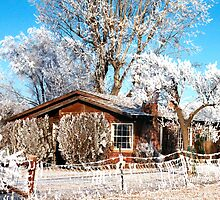 Idaho Winter Home in Pogo Frost/ Ice Fog, USA by Forrest  Ray