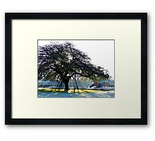 The Message Is In The Silence! - CHC - NZ Framed Print