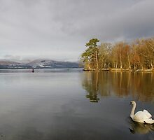 To the Loch by Susan Dailey