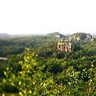 mill bluff state park . wisconsin by sara montour