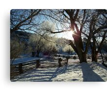 Sunshine and Shadow  Canvas Print