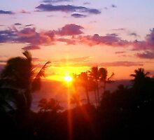 Hawaiin Sunset IV by bloodyactress
