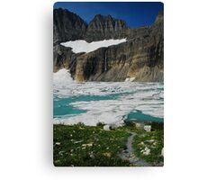 Melting Glacier Canvas Print