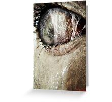 The Price of Peeping. Greeting Card
