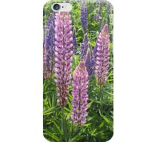 I'm Loopy For Lupins. iPhone Case/Skin