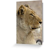 Lioness Profile Greeting Card