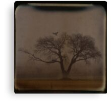 Foggy Morning TTV Canvas Print