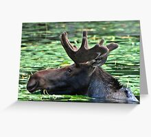 Nike Moose Greeting Card