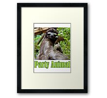 Party Animal - The Sloth Framed Print