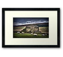A barn and some sheep Framed Print