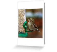 Christmas Lunch Greeting Card