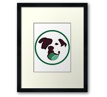 Bully Ball Framed Print