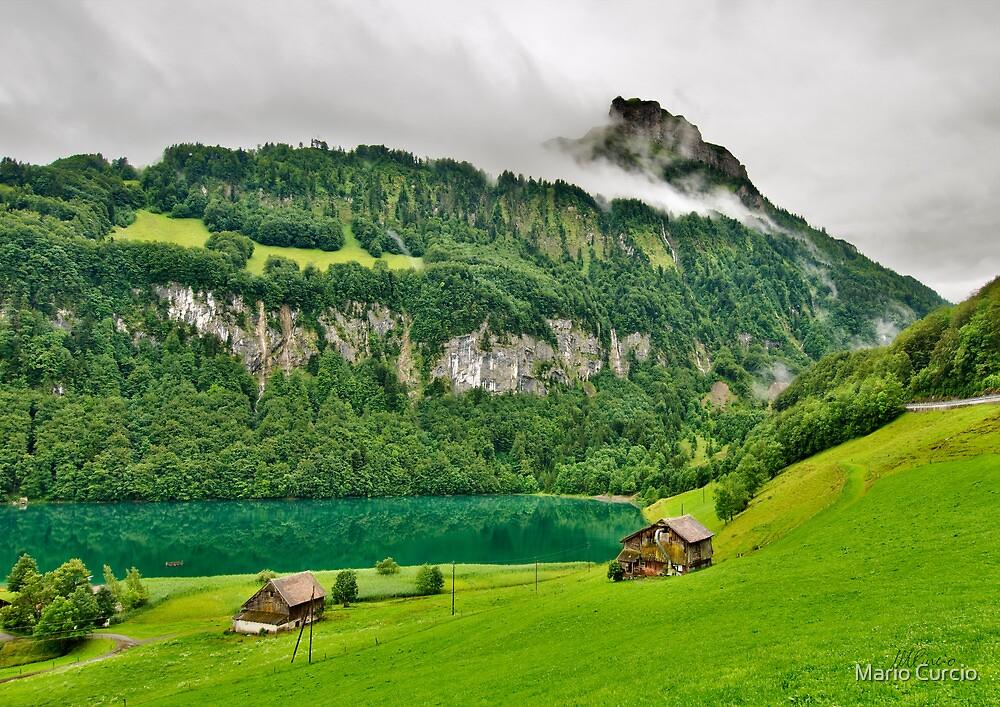 Green Land by Mario Curcio