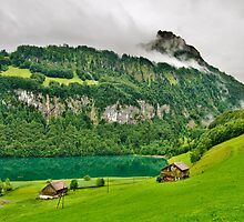 Green Land by Mario Curcio