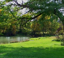 Old Country Pond by Stephanie Hausherr